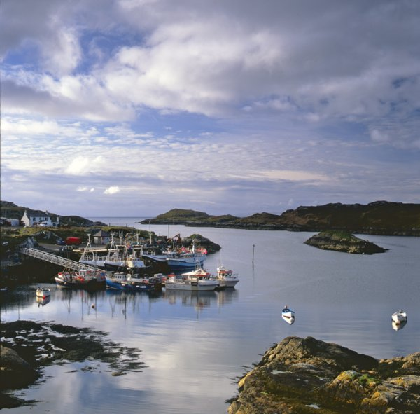 16.  Fishing harbour,  Isle of Harris