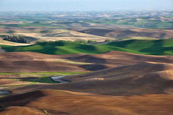 36   Palouse, Washington