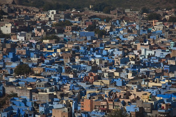 06   Jodhpur, blue city