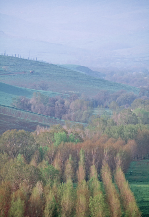 22.  On the road to Pienza