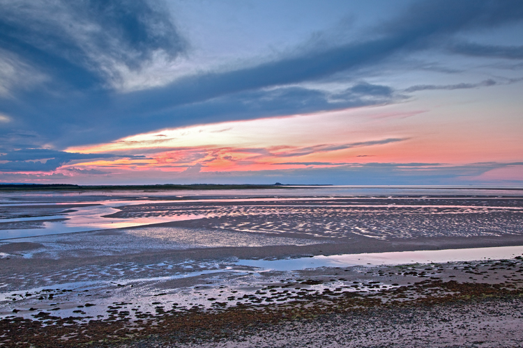 39.  Budle Bay,  low tide